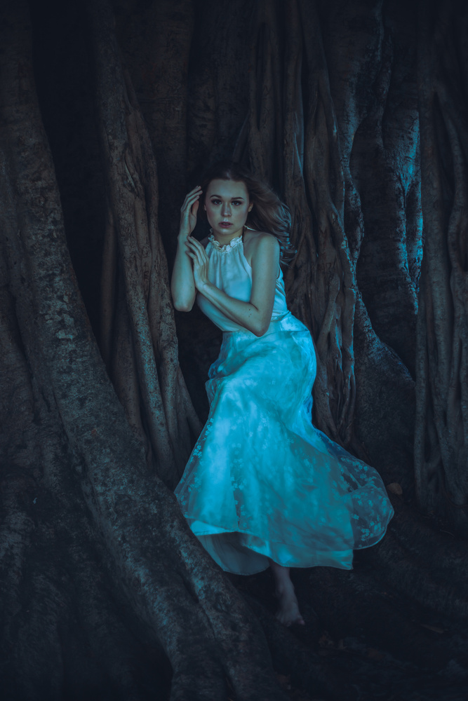 By the Banyan Tree by brittany reinhard