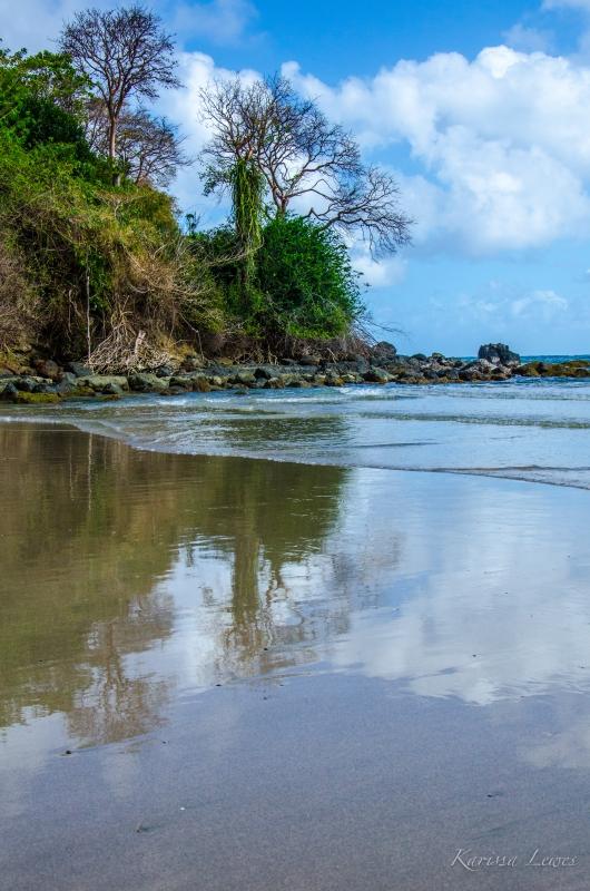 Tobago Reflections by Karissa Lewes