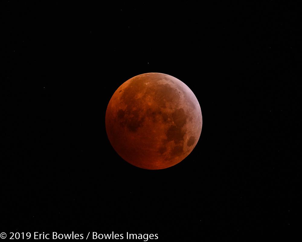 Lunar Eclipse by Eric Bowles