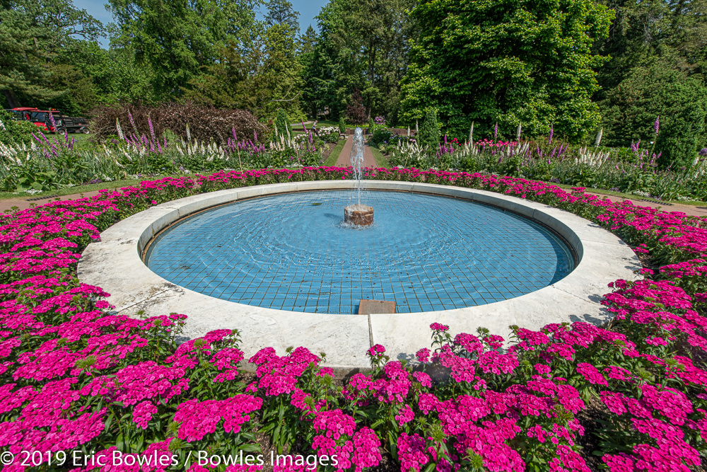 Flowers and Fountain by Eric Bowles