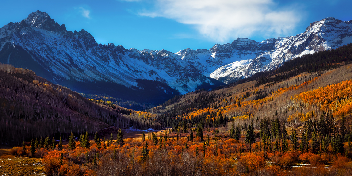 Fall Colors at Dallas Divide by Tom Wagenbrenner