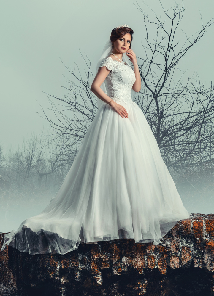 Wedding by Hossein shamkhali
