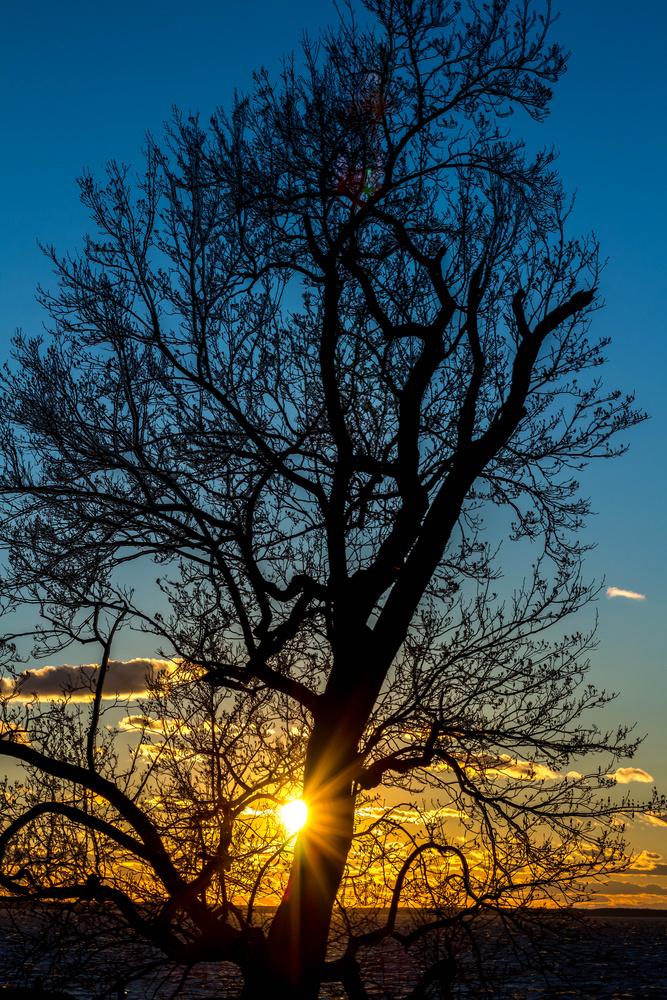 Beautiful Sunset by Steven Sendzia