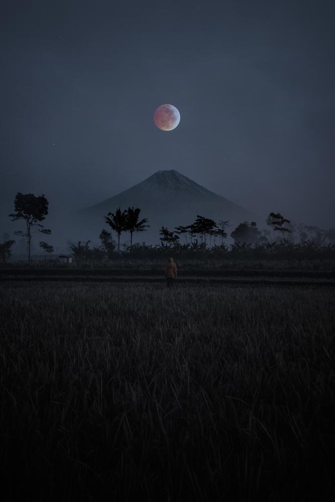 Moon talk by Miguel Martins