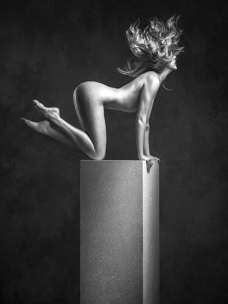 ✖ SYLPH ✖ by Robert Coppa