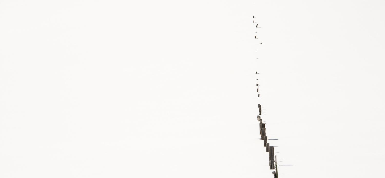 Deep Snow by Matthew Potter