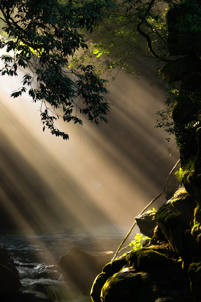 a Streak of a Sunbeam by Kenichiro Ishibashi