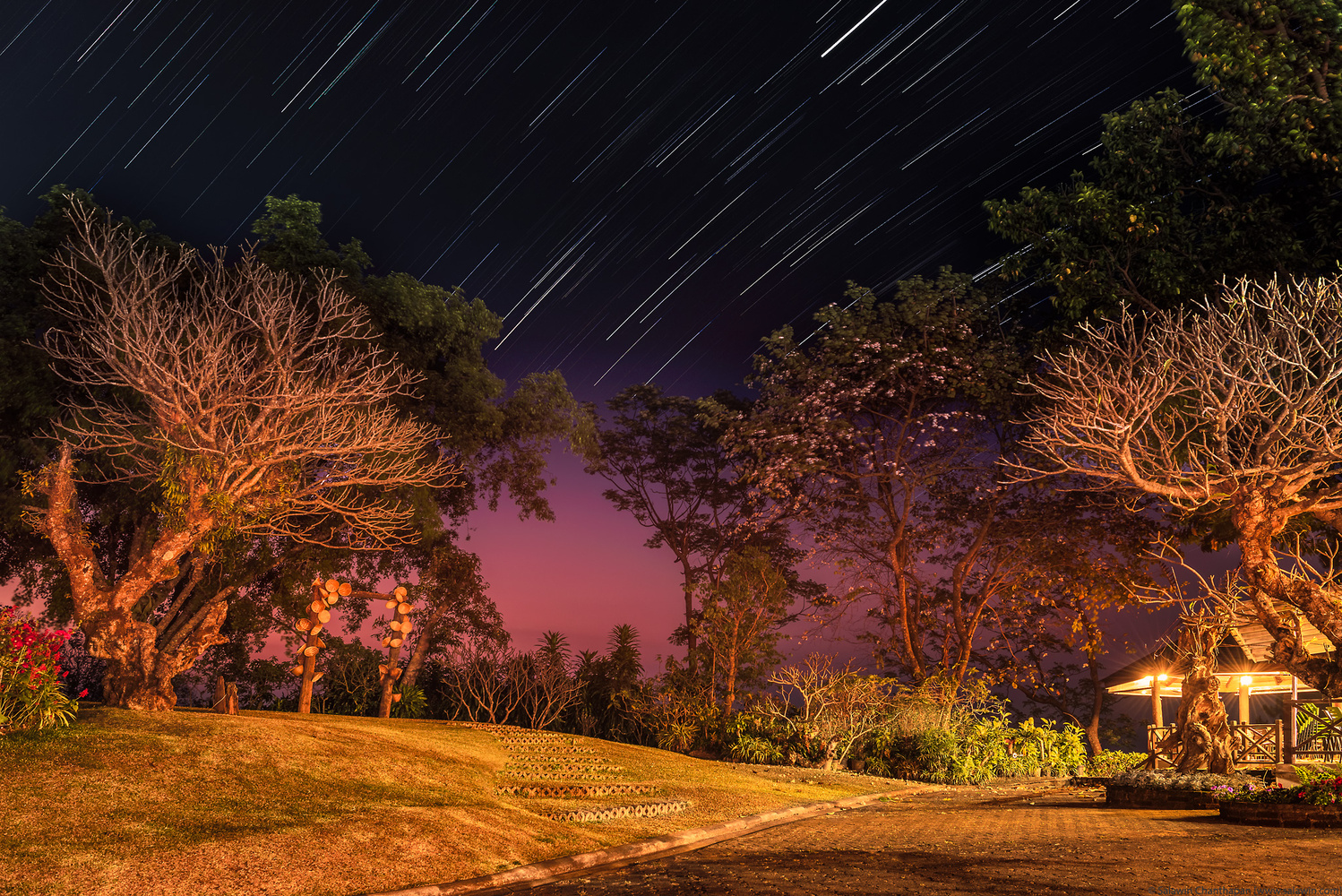 Star trails at twilight by Salawin Chanthapan