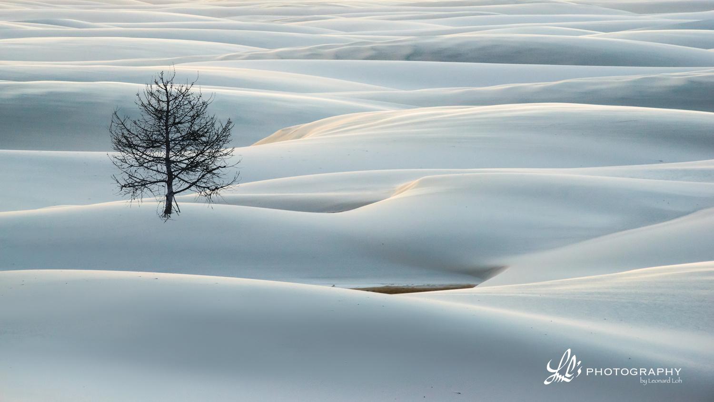 The Beauty of Solitude - 1 by Leonard Loh