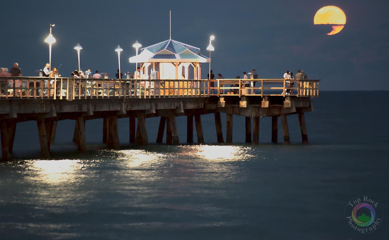 Where The Seaside Society Howls by Karim Hosein