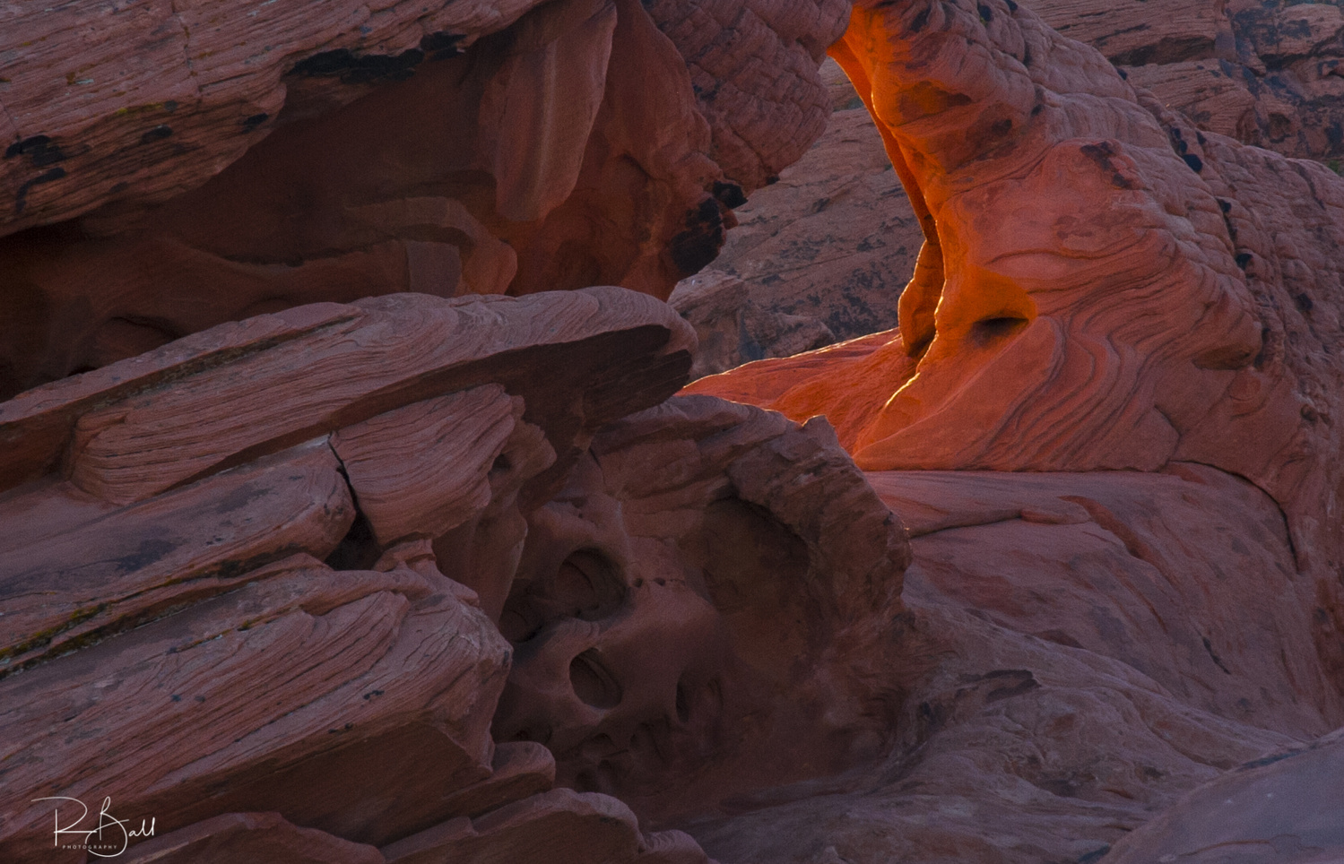 Desert Glow by robert ball