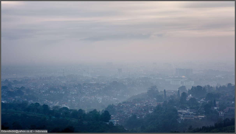 Misty morning by david kidd