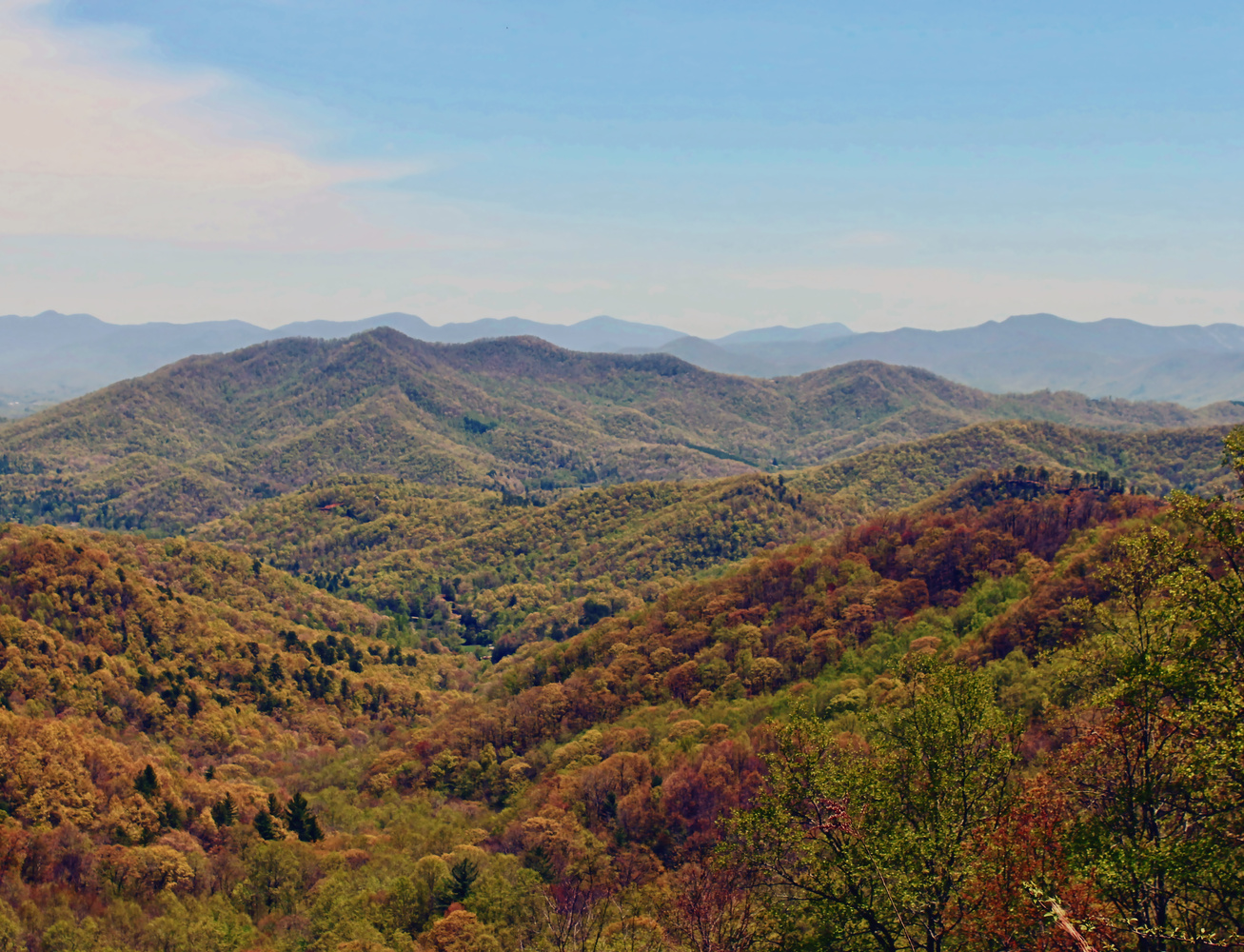 North Georgia Mountains by Andrew Smith