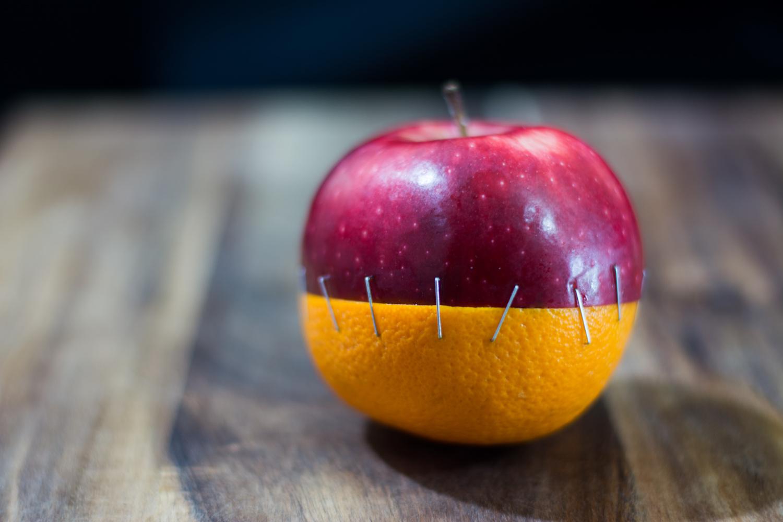 Frakenfruit by Ryan Wilson