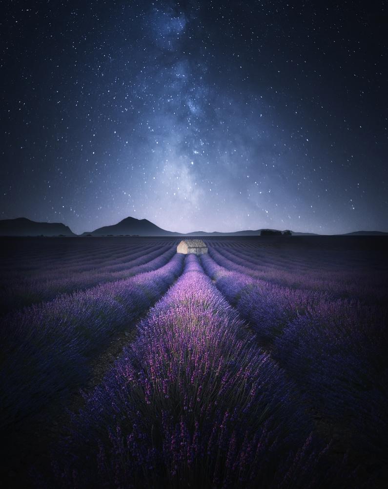 Enter Fantasyland by Aritz Atela