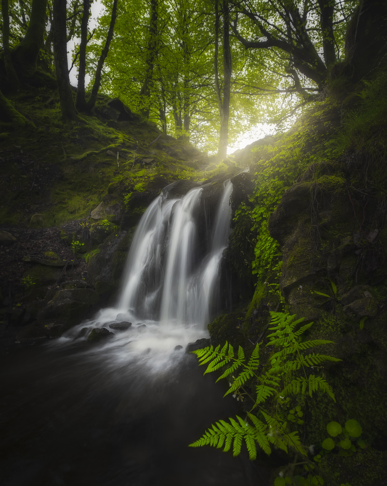 Dreamy Waterfall by Aritz Atela