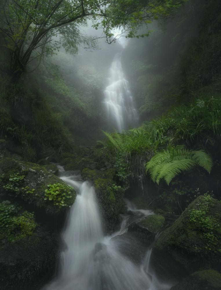 Pristine Creek by Aritz Atela