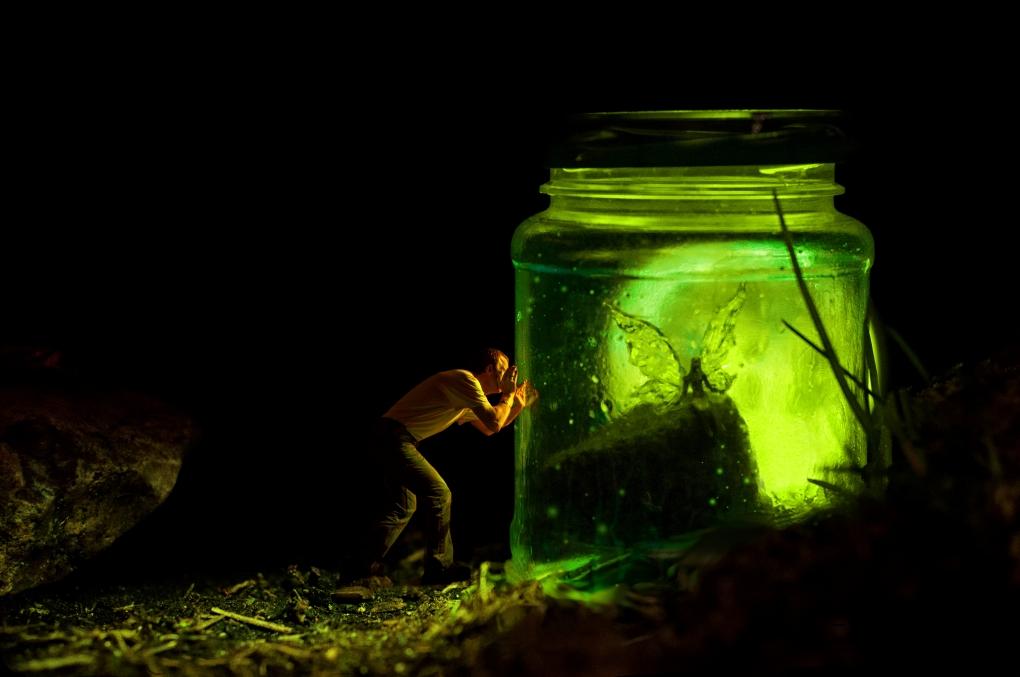 Fairy Trap by Dave Flynn