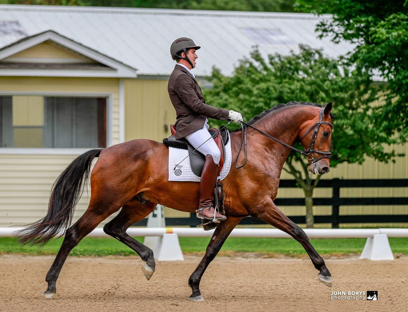 Extended Trot by John Borys