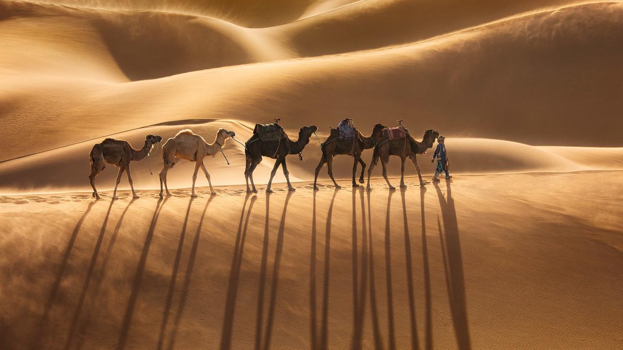 Caravan by Michael Breitung