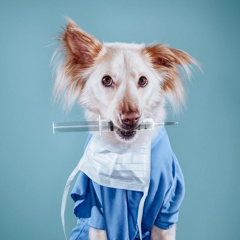Tai - Medical Assistant by Cristina Penescu