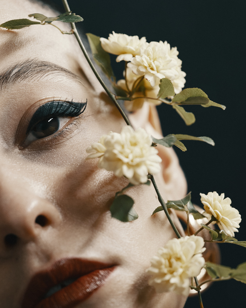 Spring by Babak Fatholahi