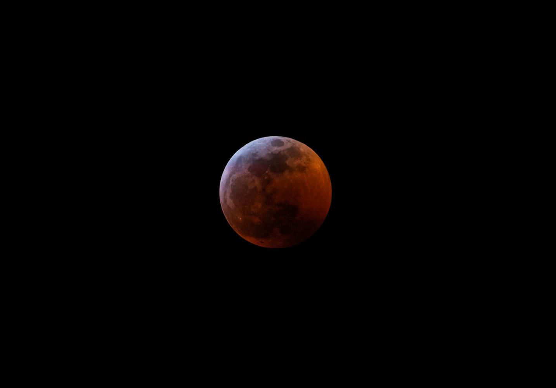 Super Blood Wolf Moon by Tyler Beard