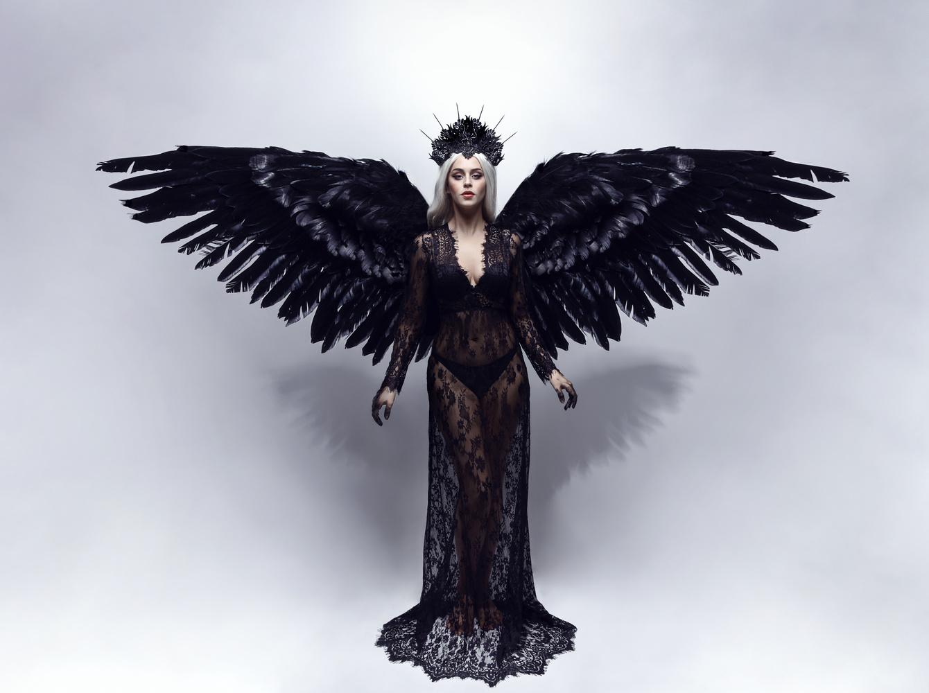 Dark Angel by Jessica Truscott