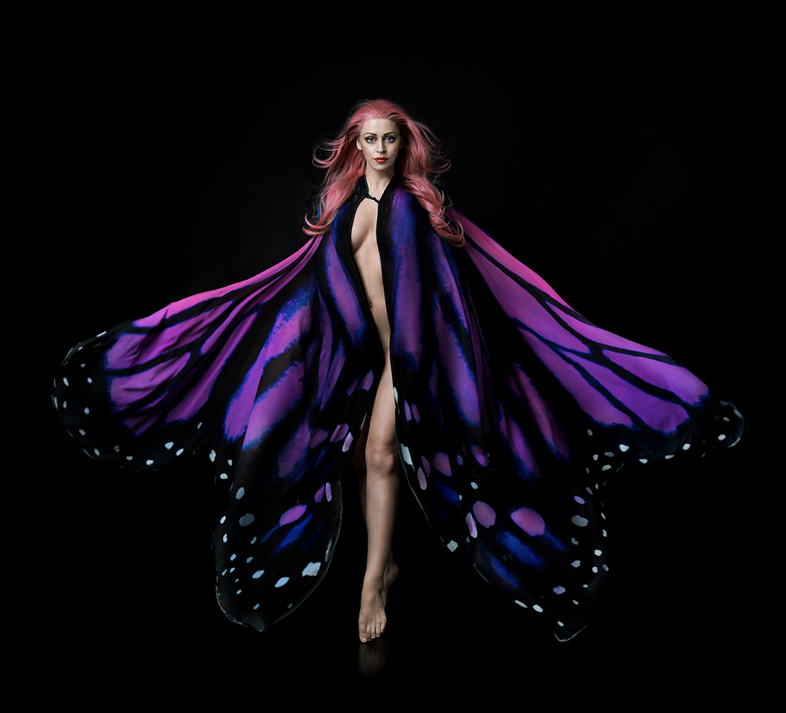 Papillion by Jessica Truscott