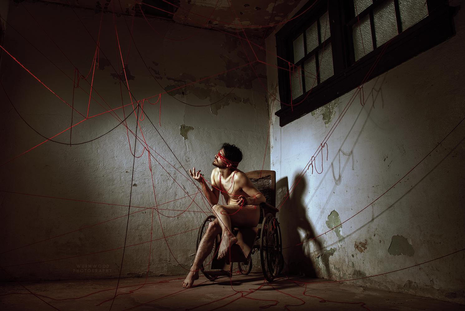 The Frail by Jess Hess
