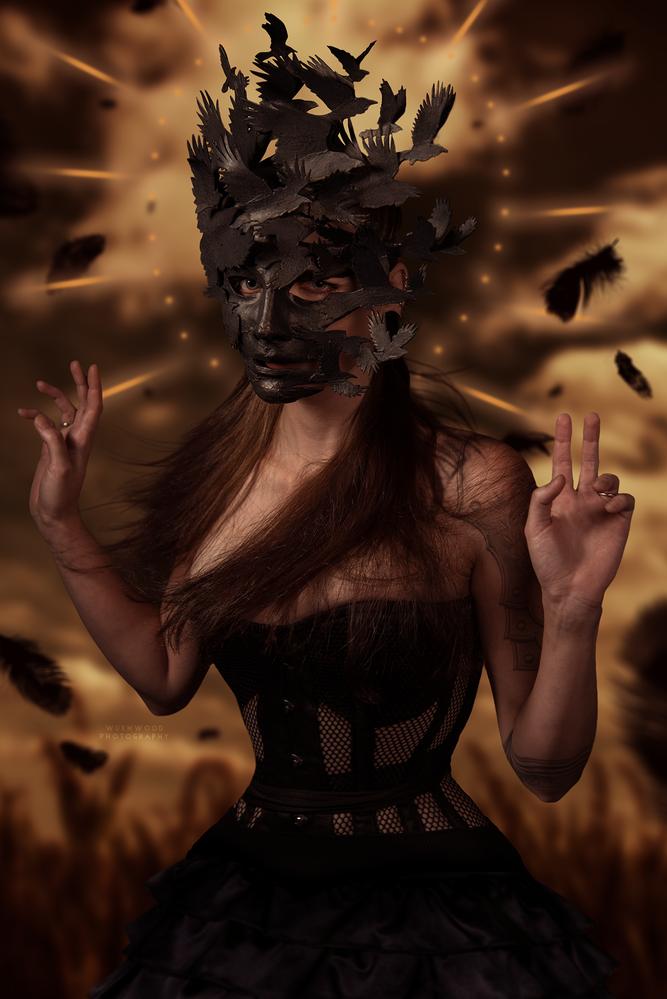 Corvus by Jess Hess
