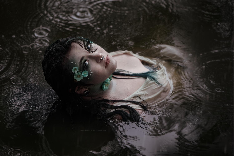 Taylacea by Jess Hess