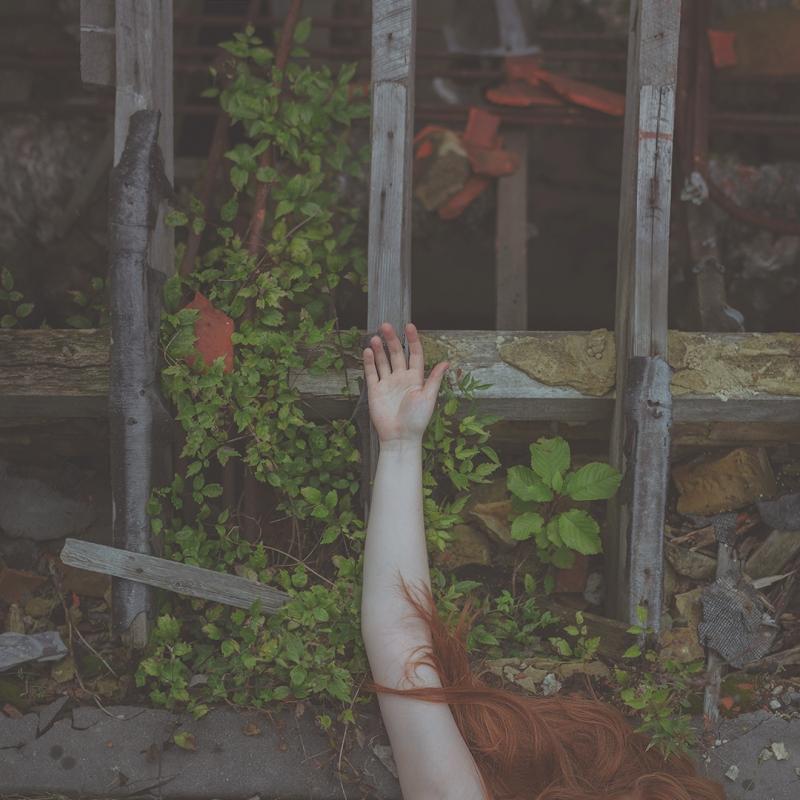 Reclaimed Wilds by Sam Goodridge
