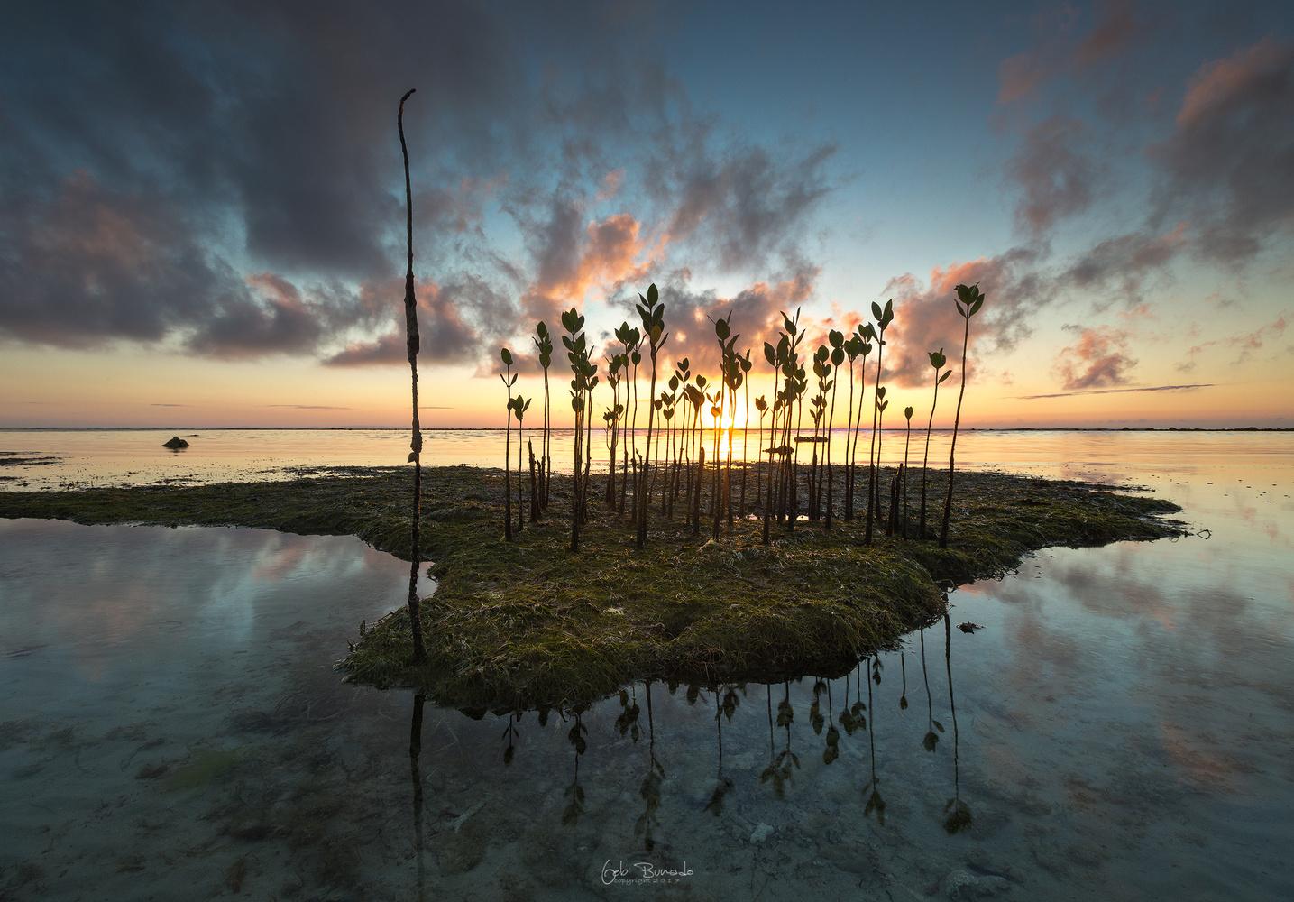 Island by Geb Bunado