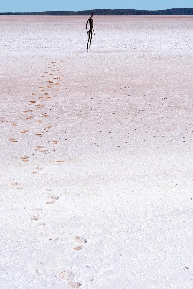 Lone walk by ashley list