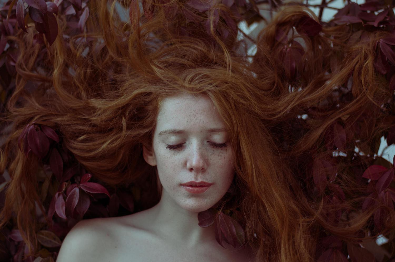 Red passion by Leo Litvac