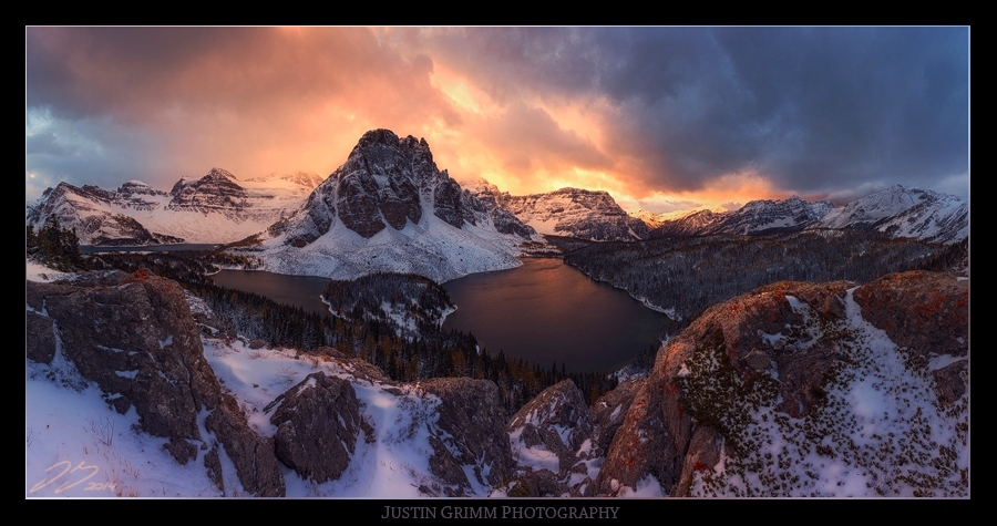 Backlit Queen by Justin Grimm