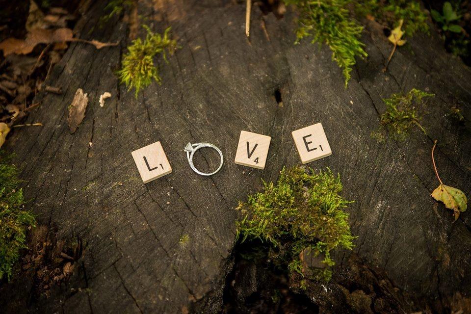 Love by Derek Gawel
