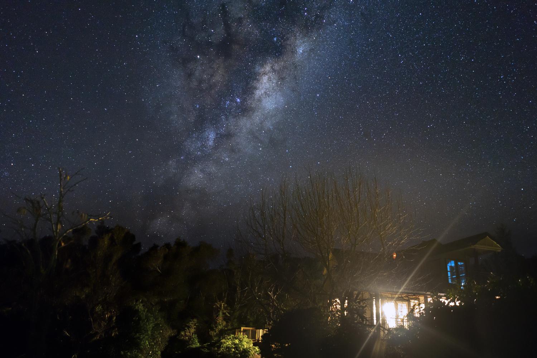 West Coast Milky Way, NZ by Blago Hristovski