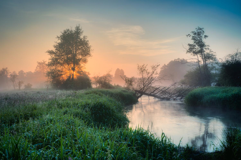 Misty morning on the river by Michał Połowiński
