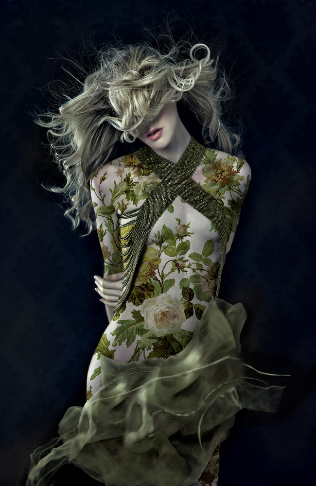 Wall flower by Lori Cicchini