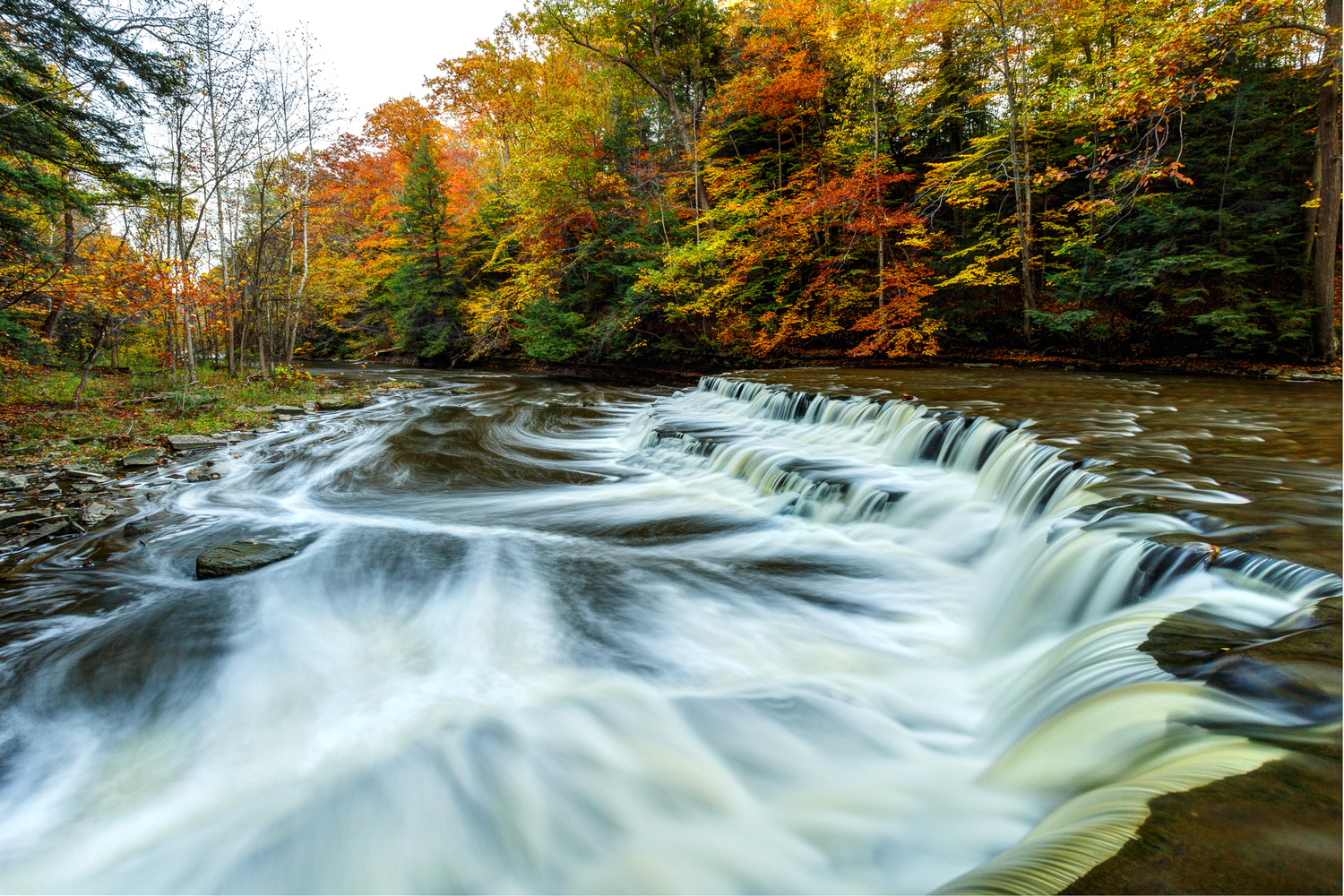 South Chagrin Reservation 2 by Alex Cooke