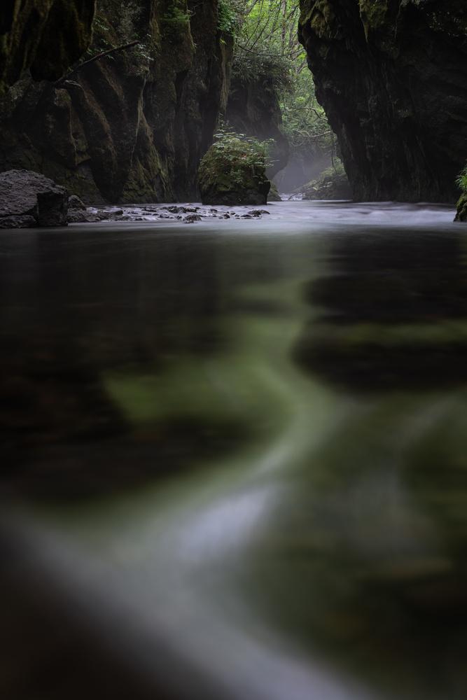 dancing flow by Hiroshi Tanita