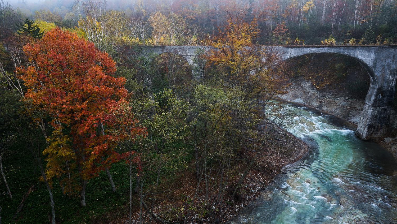 autumn colors by Hiroshi Tanita