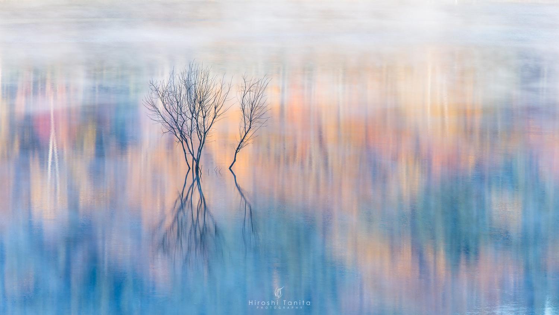 autumn colors #2 by Hiroshi Tanita