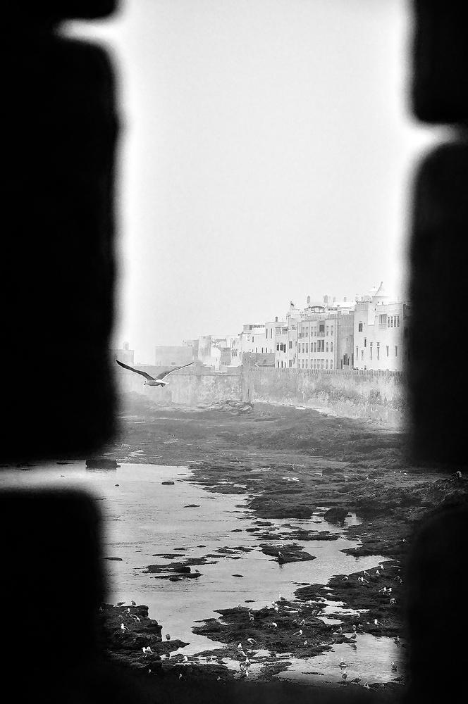 Essaouira Citadel by Shelly Murphy