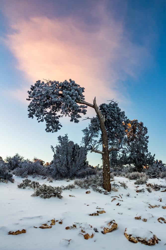 Sunrise Frost by Brandon Slames