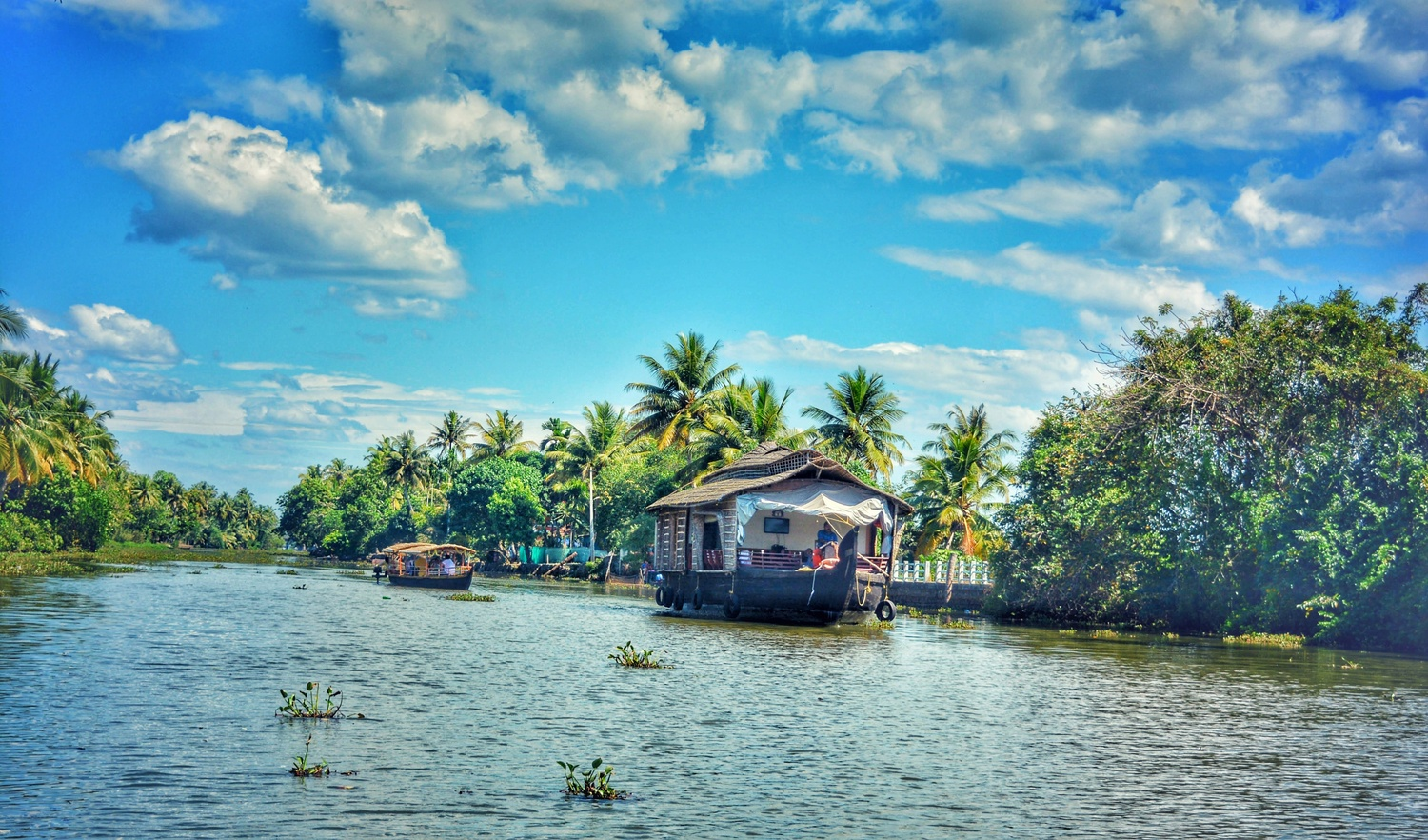 Backwaters of Allepey by hareesh cps