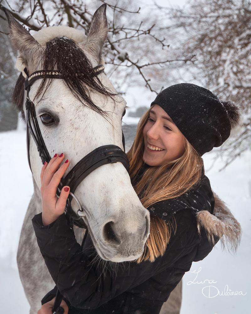 Horse in the snow by Luna Dulcinea