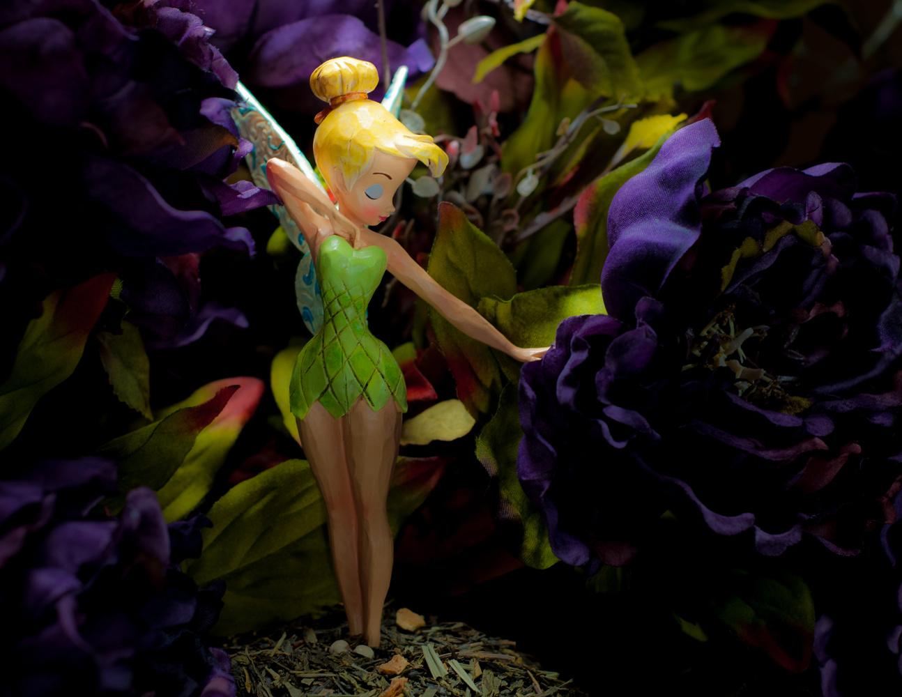 Enchanted Forrest by Ivan Guzman